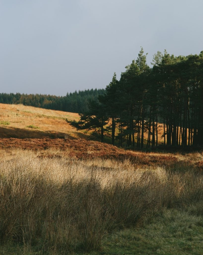Wheeldale, North Yorkshire Moors National Park, roman road