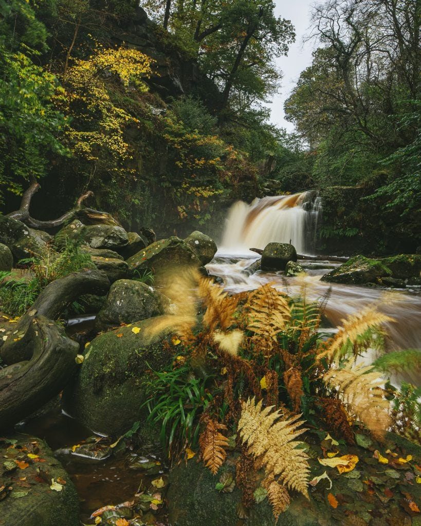 Autumn, Thomason Foss, North Yorkshire Moors National Park, holiday cottages, self catering, holiday cottages in yorkshire