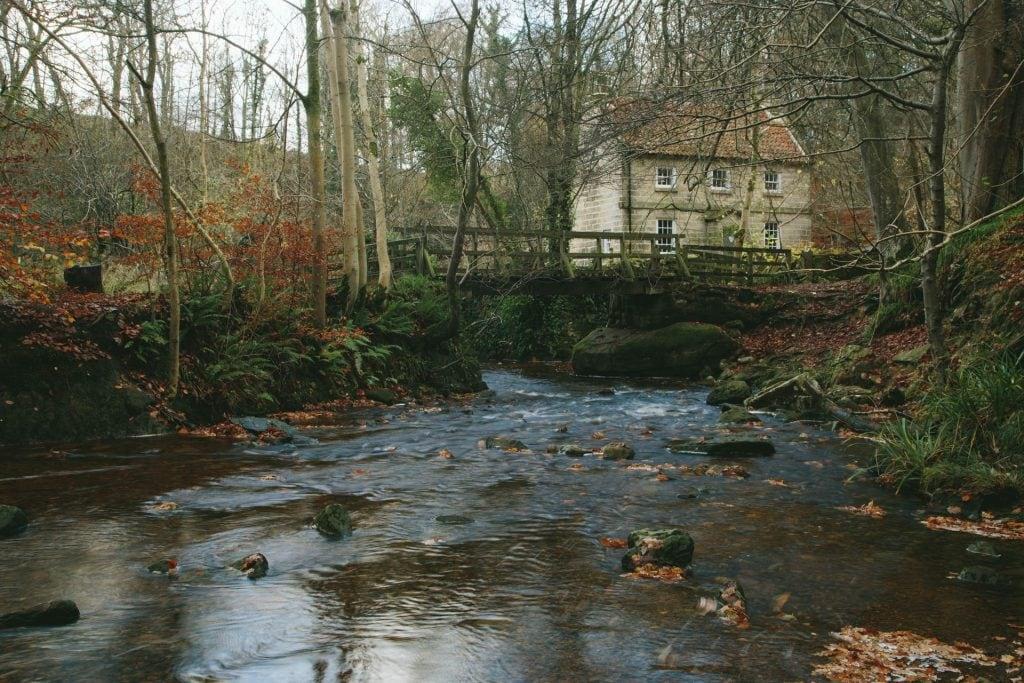 Falling Foss, Woodland Walks, Dog Friendly, North Yorkshire, Self Catering