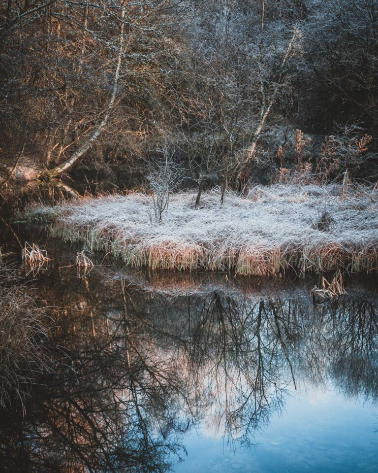 ©Alastair Ross. Copyrighted, alastairrossphotography.co.uk, cliffhouseholidaycottages.co.uk, dalby, dalby forest, ebberston, ellerburn, frost, gentle walks, holiday cottages in yorkshire, holidaycottagesinyorkshire.com, icey, icy, landscape photography, north york moors national park, north yorkshire, peak district, photography, pickering, self catering, stay at cliff, thorn, thornton-le-dake, thorton dale, thorton le dale, walking, walkshire, winter
