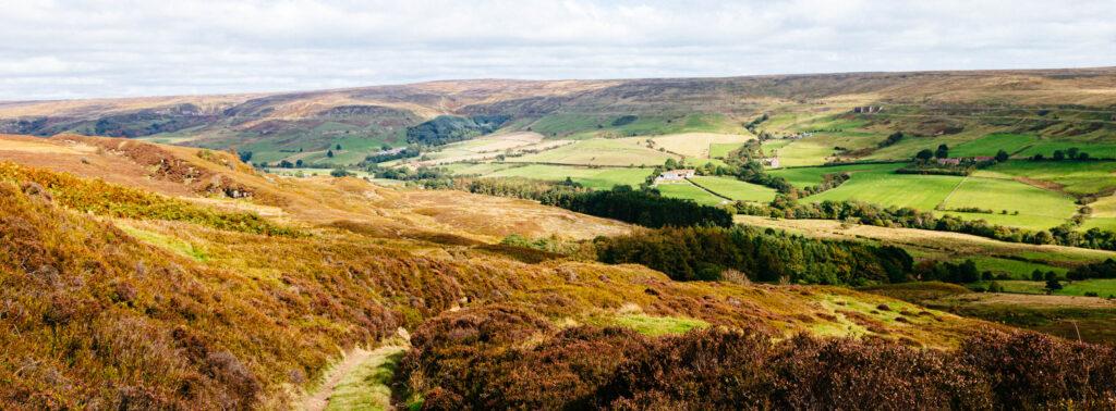 Land of irdon, rosedale, walkshire
